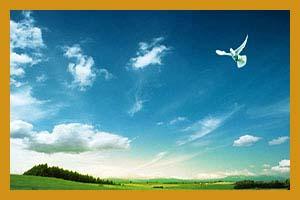 梅雨季节对白癜风患者有多大的影响