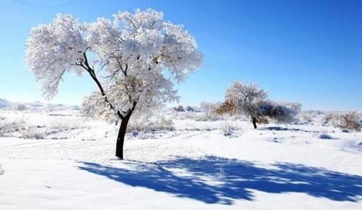 冬季白癜风都有哪些注意事项呢